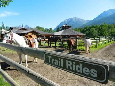 Trail Blazer Ride