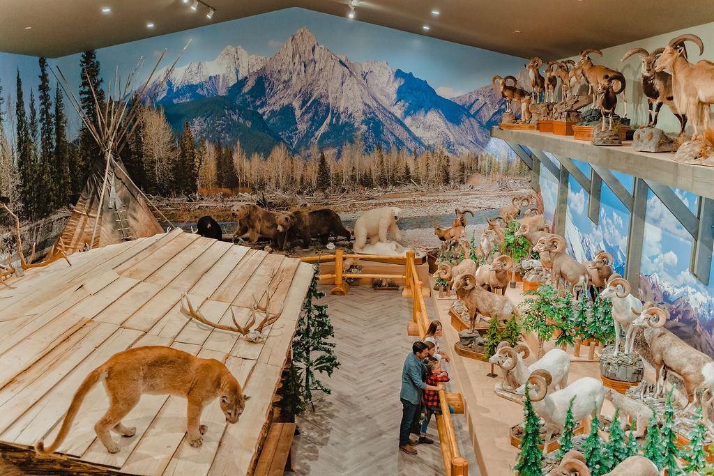Boundary Ranch Guinn Family Wildlife Museum