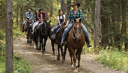 Boundary Ranch, Kananaskis, Alberta Buffalo Trail Horseback Riding Tour