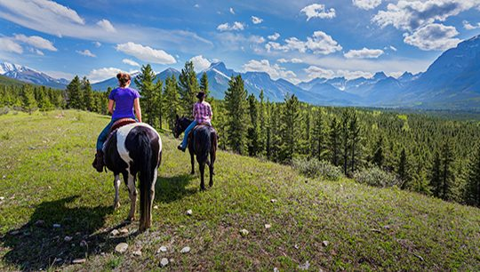 Boundary Ranch, Kananaskis, Alberta - Ridge Trail Horseback Riding Tour with Burger Lunch