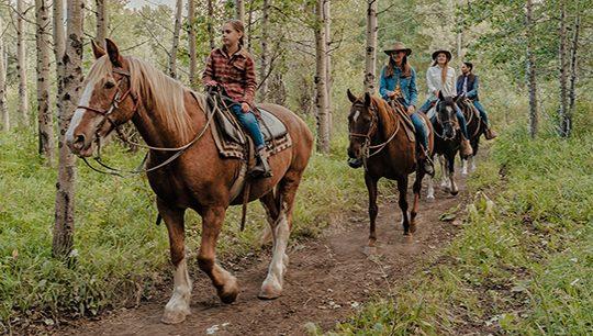 Boundary Ranch, Kananaskis, Alberta Valley Vista Trail Horseback Riding Tour