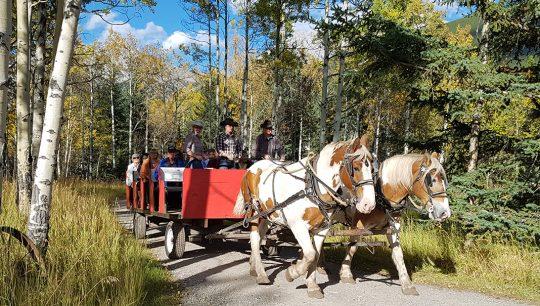 Boundary-Ranch---Kananaskis,-Alberta---Wagon-_-Sleigh-Rides---summer